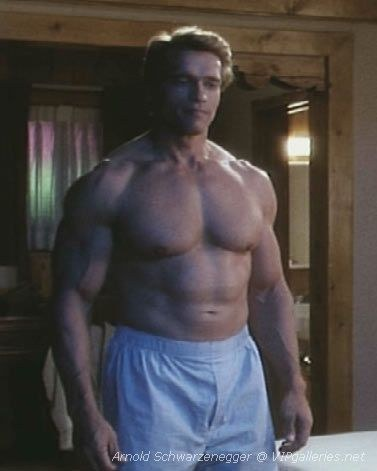 nude baech porno.com gay Arnold schwarzneger